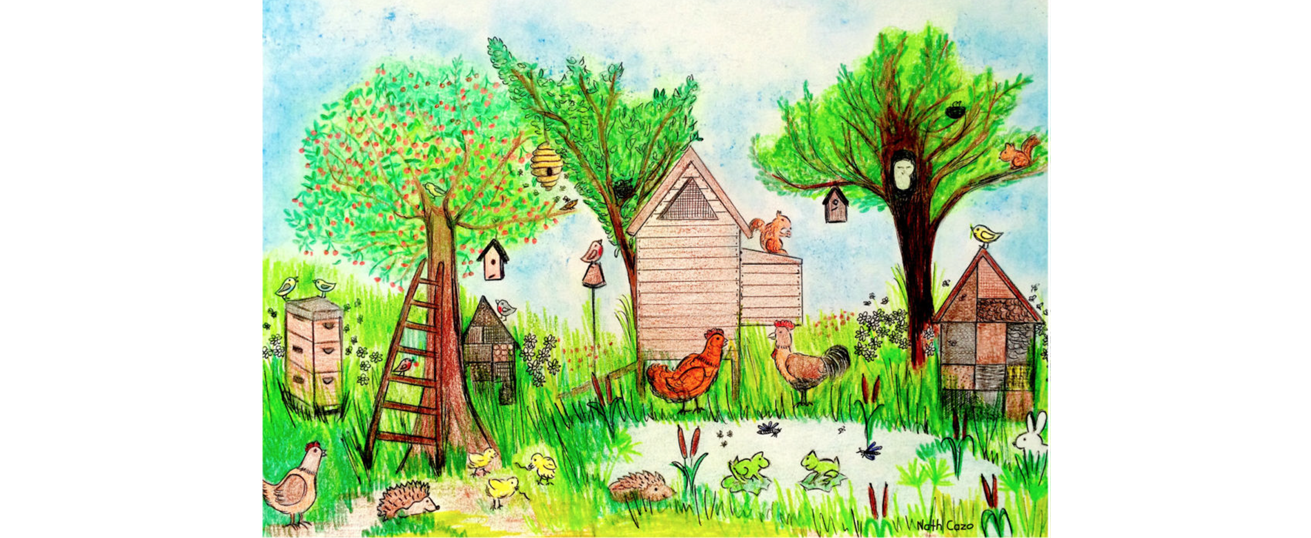 Animaux du jardin conseils et accessoires pour les - Animaux decoratif pour jardin ...