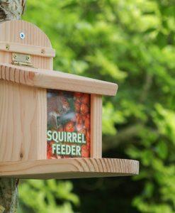 Futterhäuschen für Eichhörnchen
