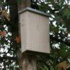 Gîte pour chauve-souris (gamme durable)