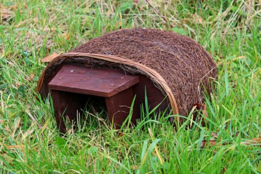 Haus für Igel