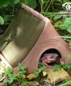 Haus für Frösche und Kröten
