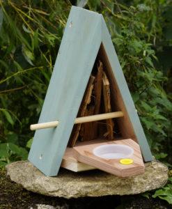 Habitat annuel pour papillons et autres insectes