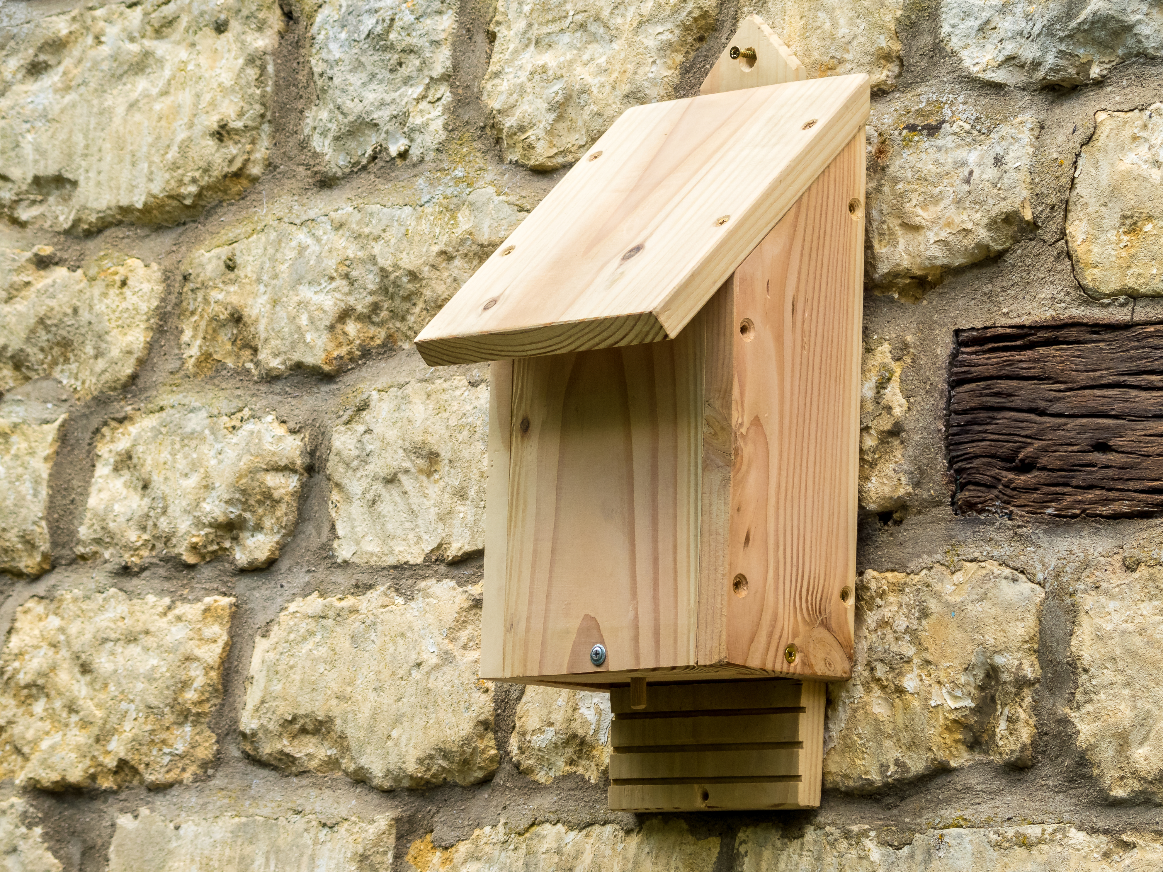 abri pour chauve souris animaux du jardin. Black Bedroom Furniture Sets. Home Design Ideas