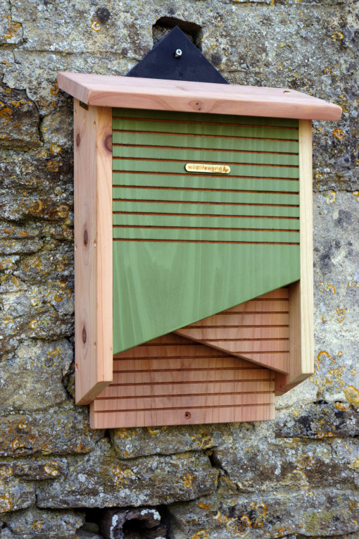 Habitat pour chauve-souris