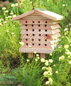 Chalet pour abeilles solitaires