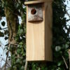 WPB Woodpecker Nestbox 1