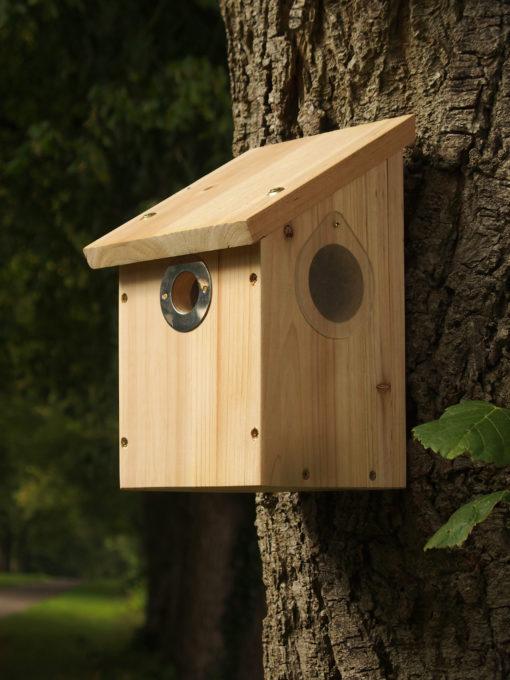 Beobachtungsbox (für Kamera)
